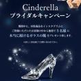 シンデレラ 「本物のガラスの靴」 プレゼントキャンペーン